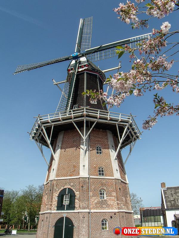 Molen Edens in Winschoten